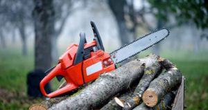 tree removal tools